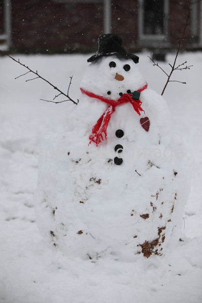 snow_7090