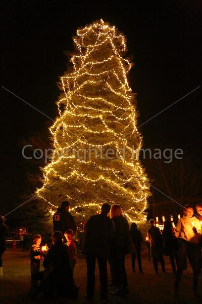 2015_Tree Lighting_6701