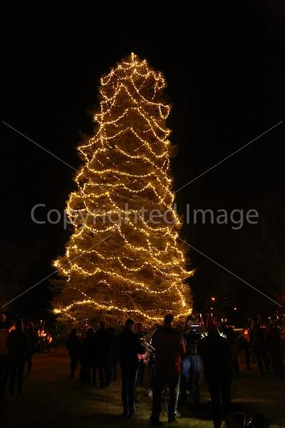 2015_Tree Lighting_6699