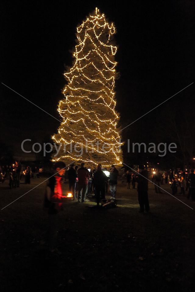 2015_Tree Lighting_6722