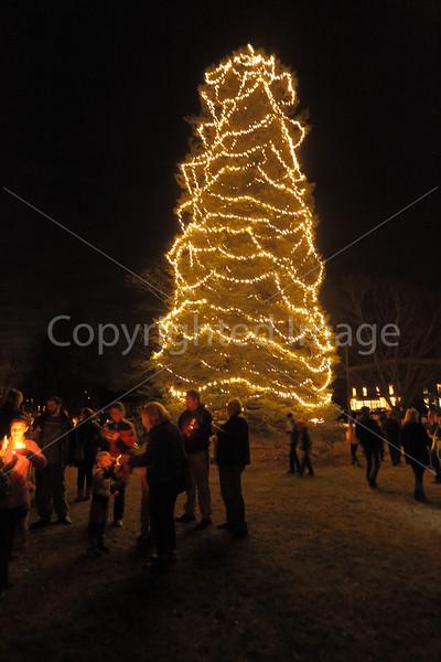 2015_Tree Lighting_6703