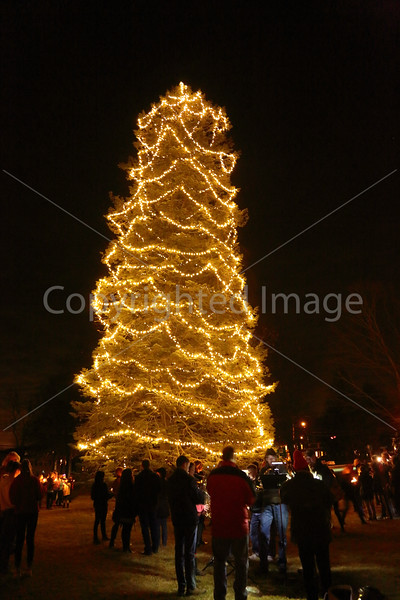 2015_Tree Lighting_6700