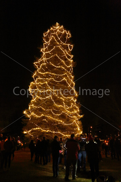 2015_Tree Lighting_6698