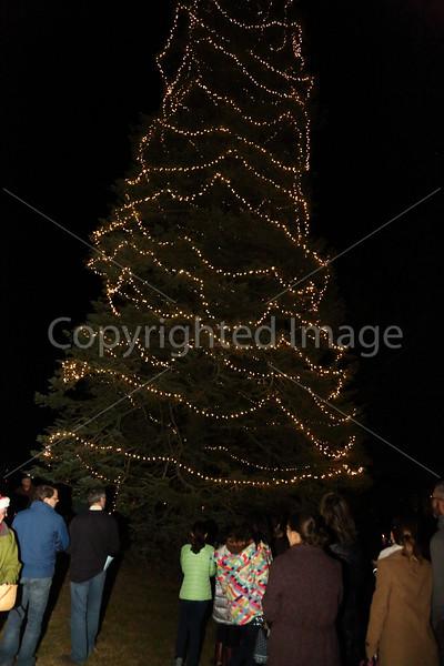 2015_Tree Lighting_6695