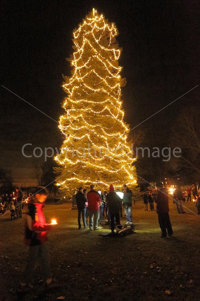 2015_Tree Lighting_6720