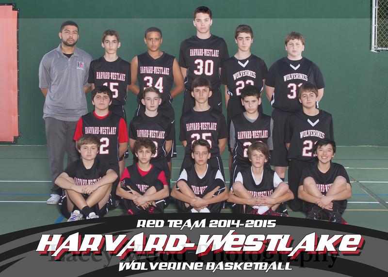 HW Boys Basketball Red Team 5x7 2015
