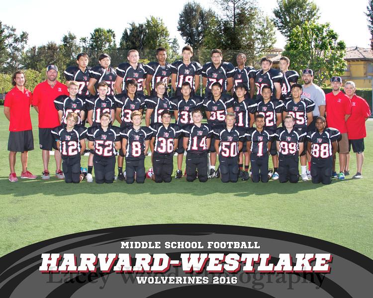 HW MS Football Team 8x10 2016