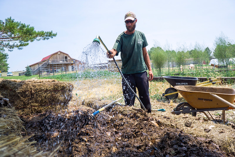 Kelly Ballantyne waters the compost pit on Tuesday June 21, 2016 at Harvest Farm. The compost has to be churned and stay wet in order for the worms to break down the material. <br /> <br /> Photo by Michael Ortiz/ Loveland Reporter-Herald