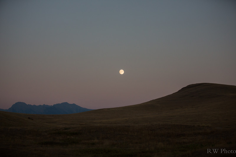 Harvest Moon from the NBR Winter Drive