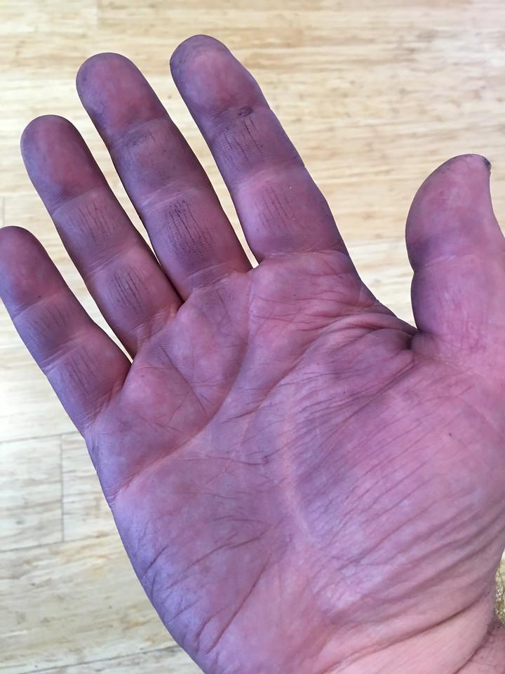 Purple Harvest Hands