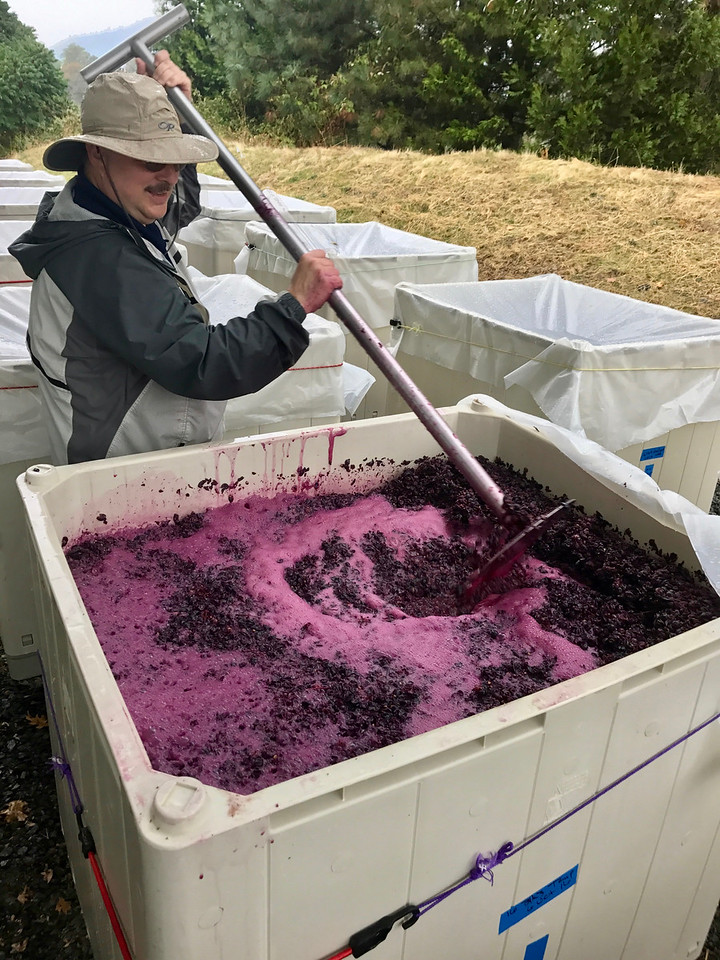 Punching Down Tempranillo