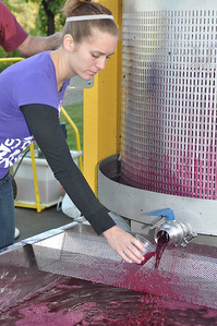 Cellar Assistant Casey Cobble tasting from the pressed juice to tell when to stop pressing