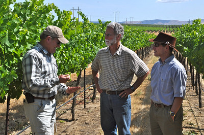 Steve Griessel and Bob Betz go over vineyard notes with Dick Boushey of Boushey Vineyard