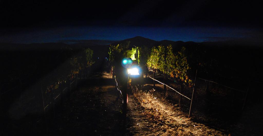 Harvest Napa Valley 2013 Cornerstone Cellars
