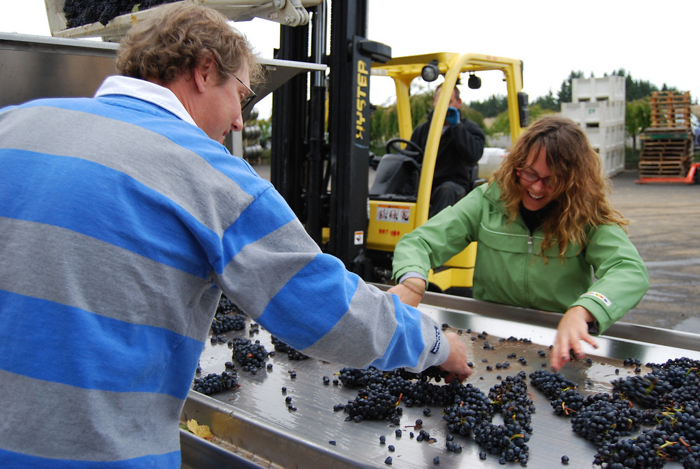 Oregon Harvest 2007, Anne Amie Vineyards