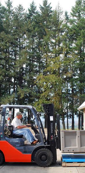 Harvest Willamette Valley 2008