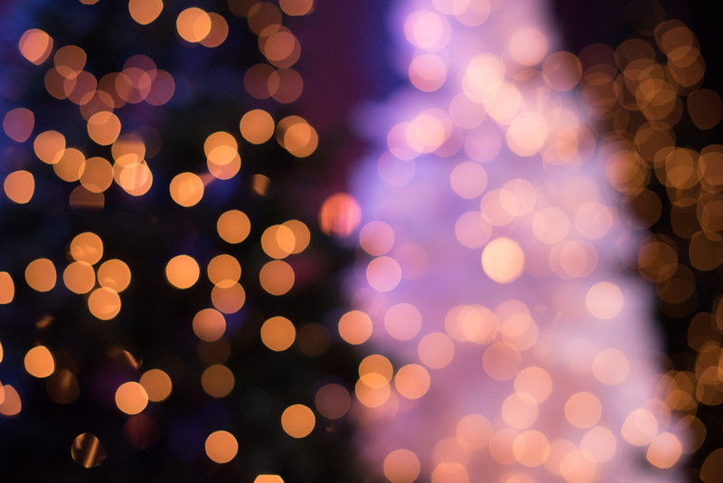 Christopher Luk 2014 - Harvest Bible Chapel York Region HBCYR - Christmas Children and Adult Choir - December 21, 2014 Highlights 014