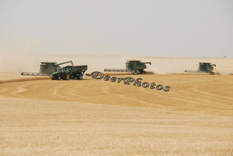 Harvest 07426