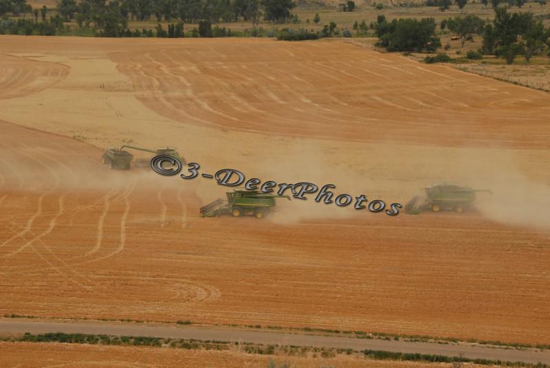 Harvest 07315
