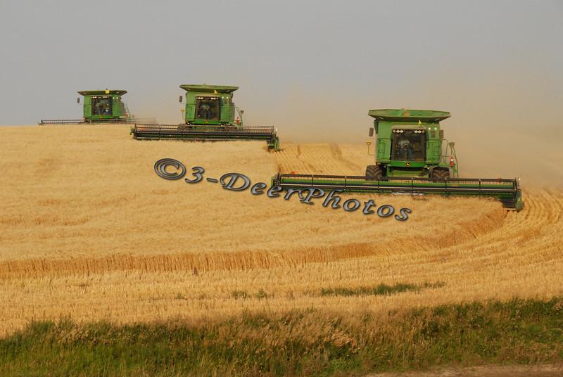 Harvest 07447