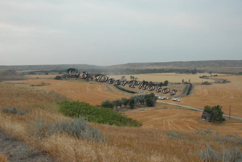 Harvest 07321