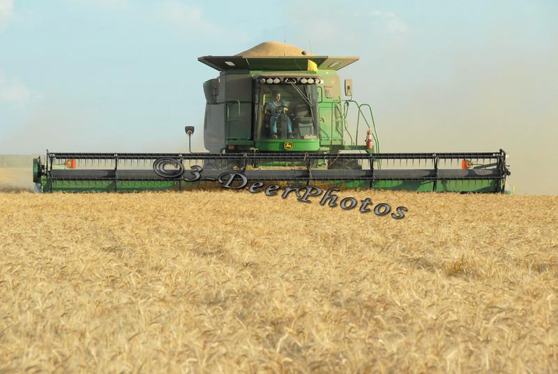 Harvest 07304