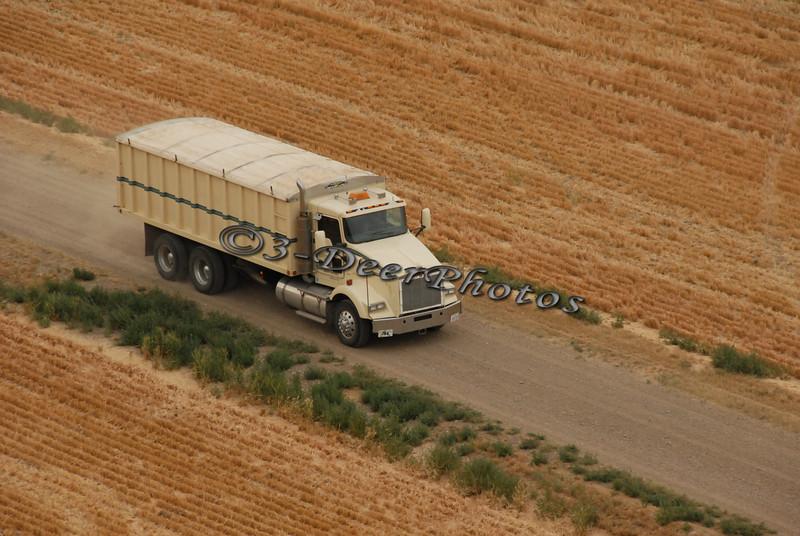 Harvest 07345