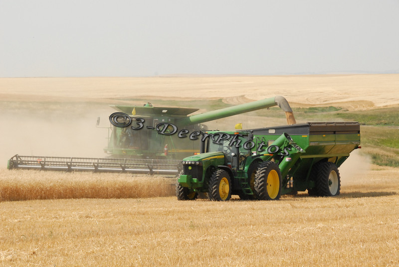Harvest 07438