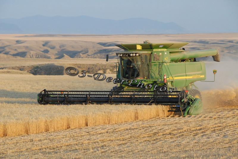 Harvest 07371