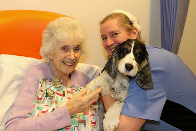25 DEC 2019 – Pictured: Patient Doreen Abbott with her dog 'Ruby' and Penny Townsend (HCA) - Harwich & District Fellowship for the Sick Christmas Gifts – Trinity Ward, Harwich Fryatt Hospital, Dovercourt. – Photo Copyright © Maria Fowler 2019