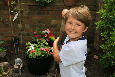 Archie Cable, Age 7, attends Mayflower Primary School