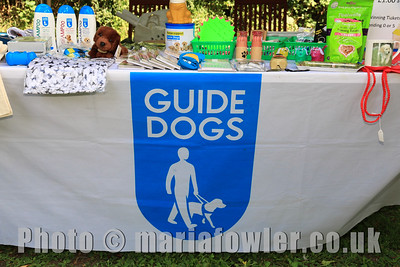 Bobbit's Hole Charity Stroll 2016, this years chosen charity Guide Dogs.