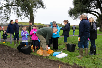 Bulb Planting at Cliff Park, Harwich.