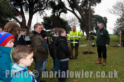 Community Tree and Bulb Planting
