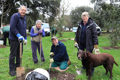 02 MAR 2019 – Pictured L-R: Harwich Society Gardening Group, Colin Farnell, Cheryl Thompson, Terry Rogers Aileen Farnell and Kia - Fruit Tree Planting, Cliff Park, Harwich. Tendring District Council and The Harwich Society Gardening Group. Photo Copyright © Maria Fowler 2019