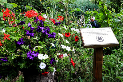01 AUG 2021 – Harwich Society COVID-19 memorial plaque at Bobbit's Hole  – Photo Copyright © Maria Fowler 2021