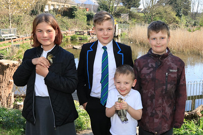 """PICTURED L-R: With ducklings 'Wispa' and 'Bolt' - Evie Harding-Double, (Age 11, Harwich Community Primary School) Harrison Rumsby (Age 14, Harwich & Dovercourt High School), Jasper Lord (Age 5, Chase Lane Primary School) and Isaac Taylor (Age 9, Chase Lane Primary School) at Bobbit's Hole Local Nature Reserve - Photo © Maria Fowler 2021  Press release  Home-Start ducklings visit their new home at Bobbit's Hole  Home-Start Harwich works with many local families and now those families are helping prepare two little local ducklings for their move to their new home at Bobbit's Hole.  Bobbit's Hole is the Harwich Society's nature reserve in Dovercourt and the two Mallard eggs were found abandoned by the lake.  Following on from the success of last year by which Home-Start's Wendy Taylor successfully incubated and reared three ducklings for release back on to Bobbit's Hole, the eggs were immediately transferred to Wendy's incubator and successfully hatched resulting in two more little ducklings who will join the mallard family on Bobbit's Hole's lake.  Aileen Farnell from the Harwich Society's Bobbit's Hole team says, """"We are very grateful to Wendy for again incubating and rearing these tiny little ducklings in her home.  It is a very delicate and time-consuming task requiring great dedication and she has done brilliantly.""""  The result is that the ducklings are now accompanying the Home-Start families on their regular visits to Bobbit's Hole so that they can gradually get used to their new home in an outdoor environment.  Wendy Taylor from Home-Start Harwich says, """"It's incredibly rewarding to watch the journey that these tiny little ducklings go on before they are finally ready to enjoy their new home at Bobbit's Hole.  Everyone connected with Home-Start Harwich loves being part of their progress and they are coming on very well.  They certainly bring a smile to everyone's face.""""  For further information please contact   Garry Calver on 01255 551940"""