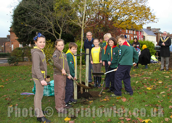 """Youngsters plant tree on behalf of Harwich Society.Members of the 1st/2nd Parkeston Cubs and the 1st Harwich Brownies took part in a tree planting ceremony in the Mayor's Gardens in Harwich on Saturday as the Harwich Society replaced a Black Poplar which was a feature of the gardens and which had to be removed last year due to age and disease. The replacement Black Poplar was paid for by the Harwich Society's secretary, Andy Rutter, and the metal tree guard was paid for by the Harwich Society.   Tendring District Council prepared the hole and placed the tree in it for the cubs and brownies to fill in watched by parents and group leaders along with the Mayor of Harwich, Cllr Dave McLeod, TDC's Portfolio Holder for Environmental Services, Cllr Nick Turner, and representatives of the Harwich Society. Harwich Society chairman, Colin Farnell, says   """"It was so important to have young people from our town involved in the planting as it is their generation who will see it reach maturity.  It will be lovely for them to be able to say they helped to plant it.""""   The Harwich Society is extremely grateful to everyone who has played a part in ensuring that a black poplar is once again a feature of the Mayor's Gardens and those present were delighted by the true community atmosphere that accompanied the tree planting ceremony.   """"The tree planting was a great occasion with such a community atmosphere,"""" continued Colin Farnell.  """"It was another good example of everyone working together to do something positive for our town."""" For further information please contact: Colin Farnell on 01255 553610 or Garry Calver on 01255 551940 www.harwich-society.co.ukRegistered with the Civic Trust Registered Charity No. 261798Photography © Maria Fowler 2013"""