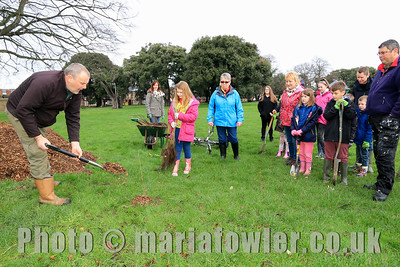 Tree Planting, Cliff Park