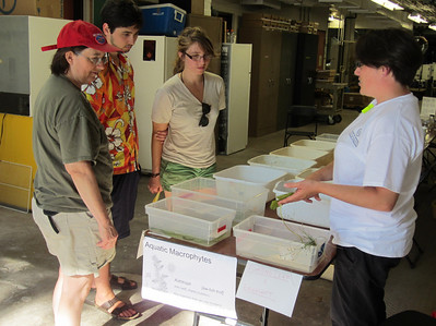 Ali talks with visitors about Wisconsin's native and invasive plants.
