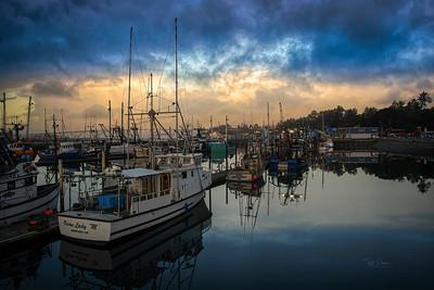 Newport Stillness