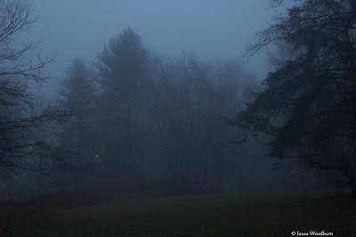 Haunted Morning