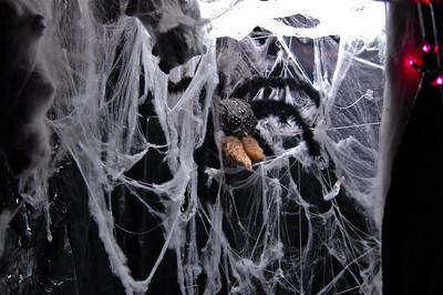 Spider Room - 1
