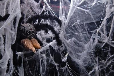 Spider Room - 2