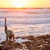 DSC03462 David Scarola Photography, Haute Yoga Palm Beach and Jupiter, web