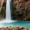 Havasu Falls with white flowers in the foreground.