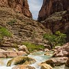 Havasu Creek near the Colorado River.