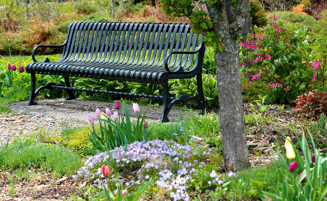 Springtime Serenity
