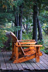 A Cedar Sit In The Cedar Stand