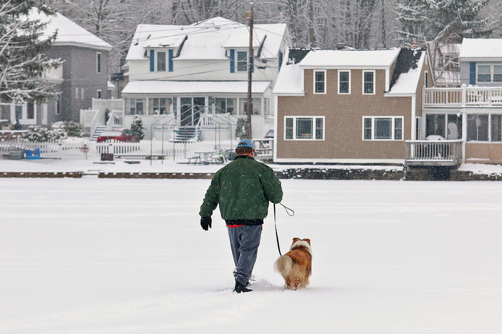 . A little snow and temperatures in the low 30\'s did not stop Matk Testa of Leominster, who lives by Lake Whalom, and his dog Palmer, a shetland sheepdog, from taking a walk on the lake Wednesday afternoon. SENTINEL & ENTERPRISE/JOHN LOVE
